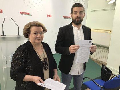 PSOE pedirá con moción en Diputación de Jaén un protocolo de prevención sanitaria para personal de ayuda a domicilio