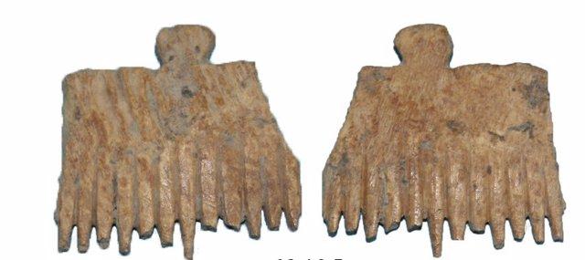 Elementos dentados hallados en el yacimiento