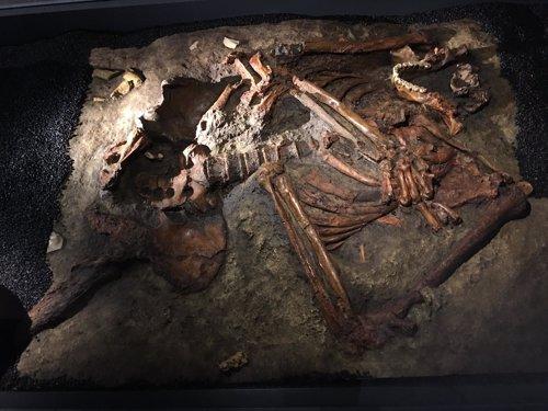 Réplica del esqueleto Kebara 2