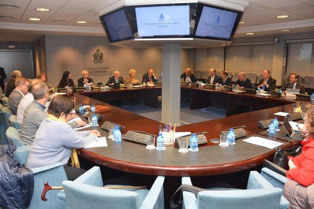 Reunión del Pleno del Consejo General de Enfermería