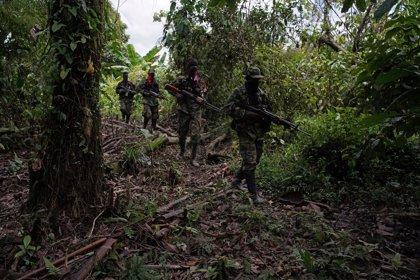 Mueren seis personas en un enfrentamiento entre disidentes de las FARC y miembros del ELN