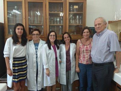 Científicos españoles consiguen mejorar la respuesta antioxidante del hígado bloqueando una proteína