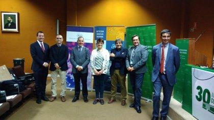 Un proyecto sobre la administración eficiente de datos oncológicos, premio IBIMA-Roche a la innovación