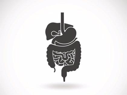 Un estudio asocia la colectomía con mayor riesgo de diabetes tipo 2