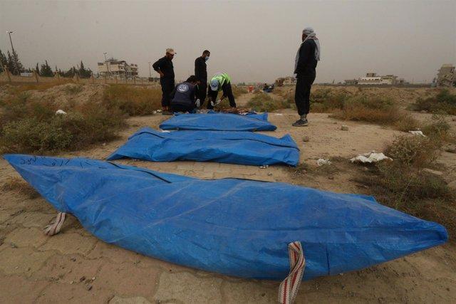 Cuerpos recuperados de una fosa común en Raqqa (Siria)