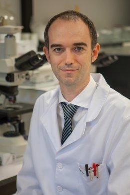 El investigador Daniel Ajona