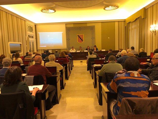 El Consell Social de la Llengua Catalana aprueba los documentos de las ponencias