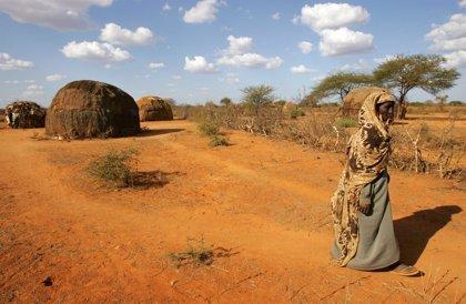 La OMS confirma diez muertos en Etiopía por fiebre amarilla