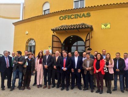 Reyes valora la apuesta de la cooperativa San Vicente de Mogón por un cultivo sostenible y un aceite de calidad