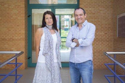 Investigadores de la UJI diseñan pequeñas moléculas que inhiben las enzimas en procesos infecciosos