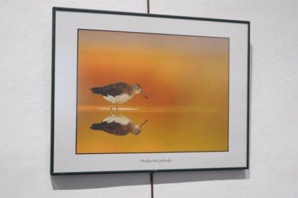El fotógrafo Alfonso Roldán exhibe en la Diputación parte de su colección de imágenes de naturaleza