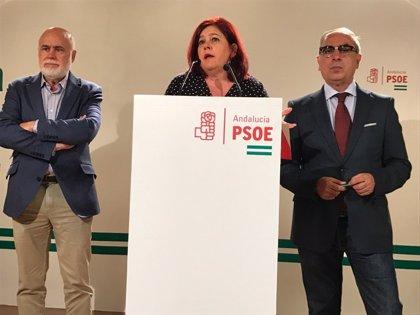 """El PSOE destaca la """"sensibilidad"""" de Fomento para """"acabar con el aislamiento ferroviario"""" de Granada"""
