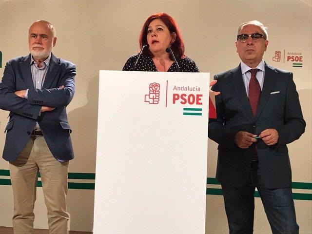 La diputada en el Congreso, Elvira Ramón, presenta las enmiendas a los PGE