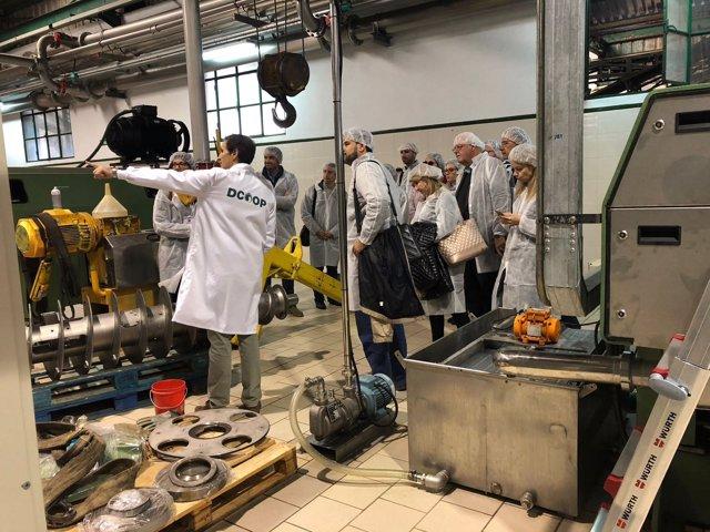 Visita almazara malagueña proyecto europeo aceite de oliva AOVE mejora fenoles
