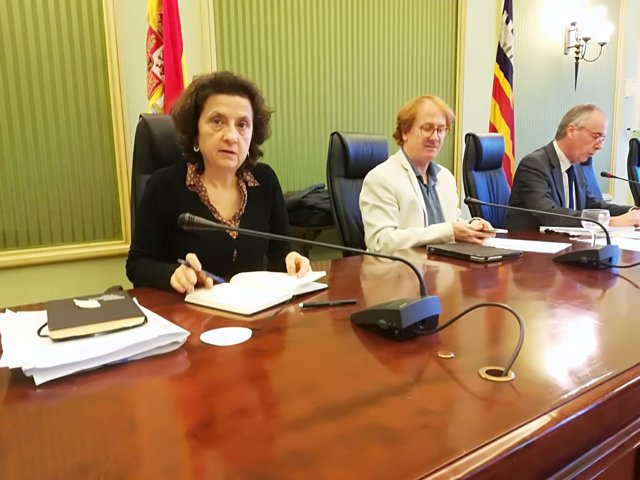 Fina Santiago en comisión en el Parlament
