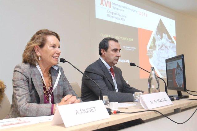 Inaugurado en Sevilla el International Microsurgery Symposium