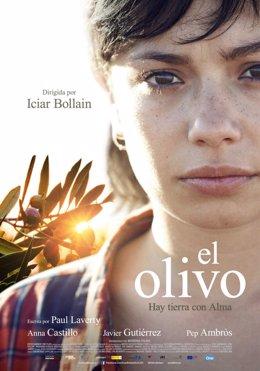 Cartel de la película El Olivo.