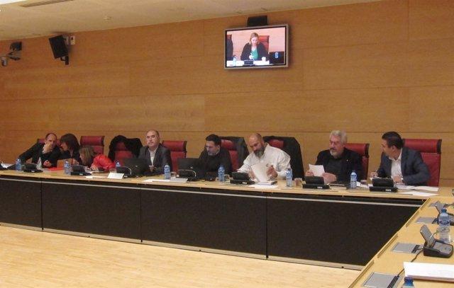 Grupos de la oposición en la Comisión de Fomento y Medio Ambiente de las Cortes