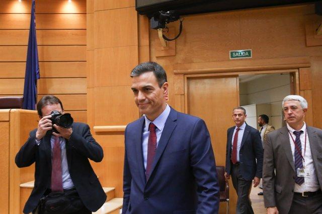 Pedro Sánchez en Sesión de control al Gobierno en el Senado