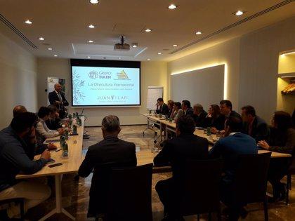 Eulen Flexiplán analiza la olivicultura internacional y la contratación temporal con empresarios andaluces
