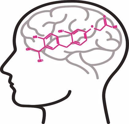 Hallan el análogo de hormona tiroidea 'sobetirome' como un posible fármaco para el síndrome de Allan-Herndon-Dudley