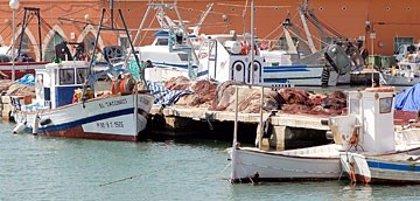 El Govern aprueba las ayudas destinadas a la paralización de la flota de pesquera