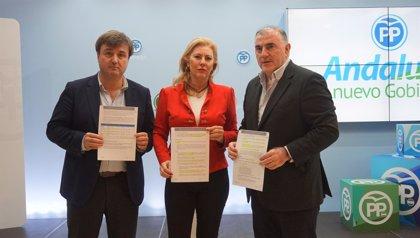 """El PP acusa al Gobierno de """"paralizar"""" 25 obras en Málaga y le pide que """"las saque adelante"""""""