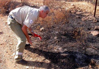 """Agentes forestales lamentan agresiones a profesionales de este cuerpo que hacen """"imposible"""" que """"cumplan con su deber"""""""