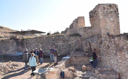 Berlanga de Duero (Soria) celebra una jornada de puertas abiertas para dar a conocer los hallazgos del Jardín de Inviern