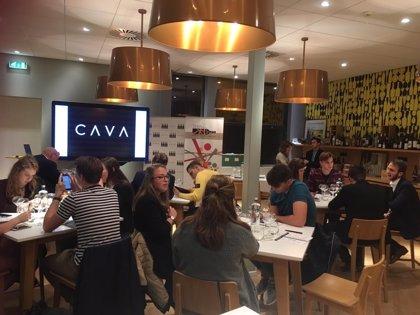 La DO Cava forma a 350 alumnos de sumillería en Bélgica, Países Bajos y Luxemburgo en 2018