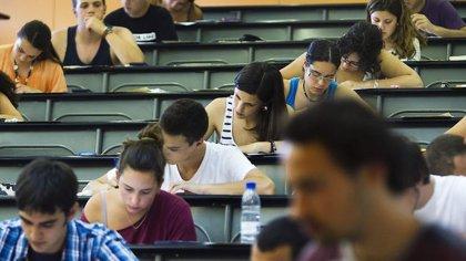El Consell aprueba 578 ayudas a estudiantes que cursan estudios superiores fuera de Ibiza y a 33 que cursan un máster