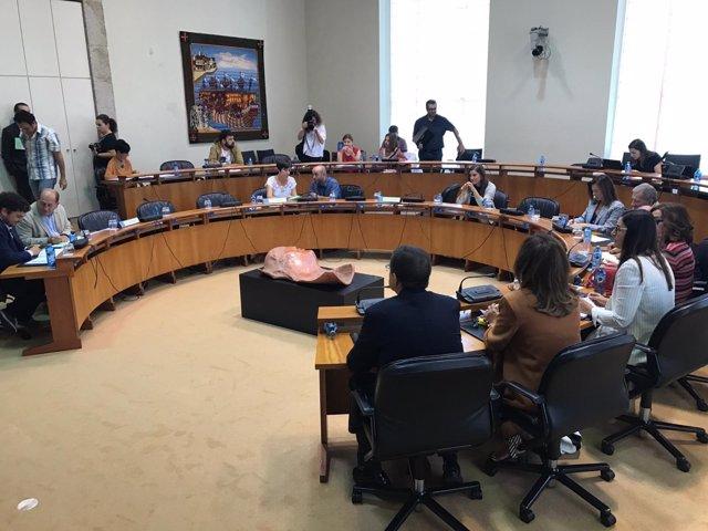 Constitución comisión de investigación del sistema sanitario