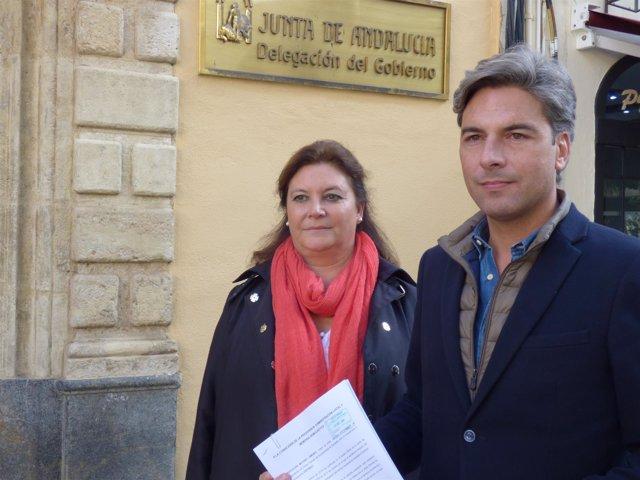 Moyano y Lorite ante la Delegación del Gobierno andaluz