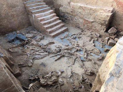 La investigació arqueològica 'Construint Tartessos' guanya el I Premi Fundació Palarq
