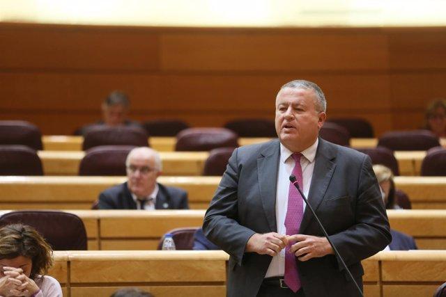 El senador Francisco Bernabé