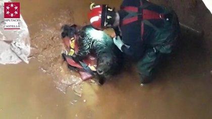 Bomberos rescatan en buen estado a un perro que había caído a un pozo de ocho metros de profundidad en Benlloc