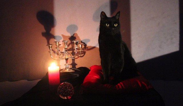 Salem sí habla en el cómic de Sabrina