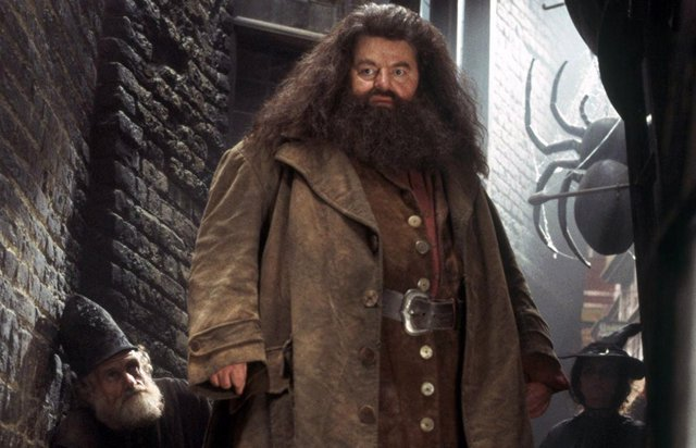 Hagrid en Harry Potter