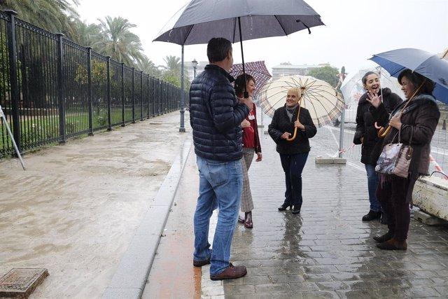 Obras de pavimentación en la avenida de la Buhaira de Sevilla