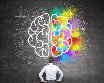 Describen el sistema de navegación del cerebro