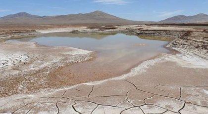 La vida microbiana del corazón del desierto de Atacama se ha extinguido por las primeras lluvias en siglos