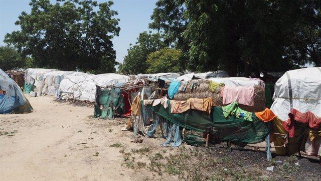 Campamentos de desplazados en Borno, Nigeria