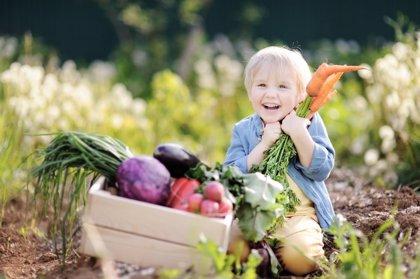 Veganos, ¿los niños también pueden alimentarse solo de vegetales?