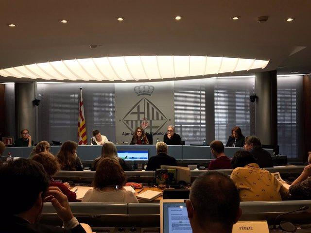 Comisión de Derechos Sociales, Cultura y Deportes