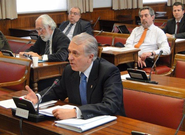 Manuel Altava, senador del PP y candidato a vocal del CGPJ