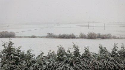 Un equipo de 230 profesionales y 36 quitanieves facilitarán la circulación en episodios de nieve y hielo en Álava