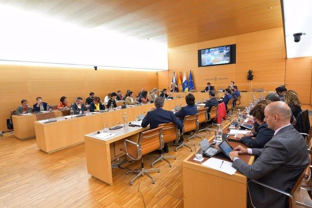 [Grupocanarias] Nota De Prensa Y Foto: Pleno Acuerdo Tenerife Sur