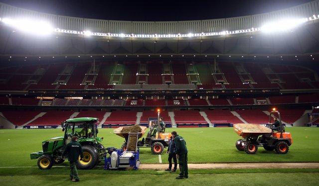 Cambio de césped en el Wanda Metropolitano