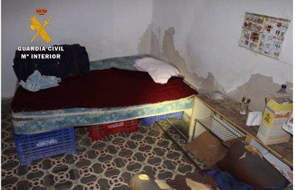 La Guardia Civil detiene a 4 personas y libera a 22 trabajadores explotados en Balazote