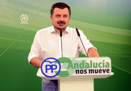 """PP-A desacredita la encuesta del CIS: """"Nadie las cree en manos de un comisario político"""""""
